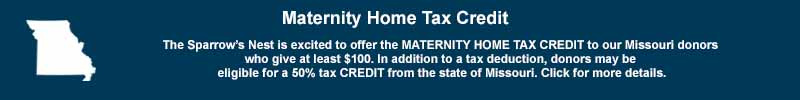 Maternity Home Tax Credit